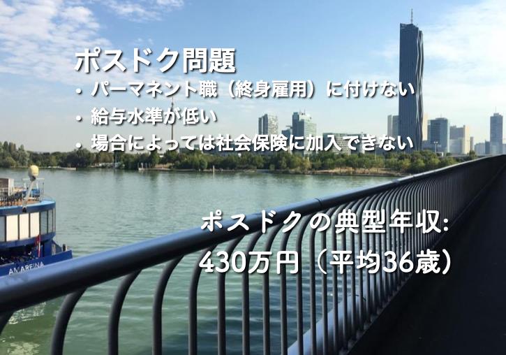 ドナウ川を背景にポスドク問題の要点を記載