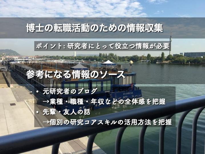 ドナウ川を背景に記事の要点を説明